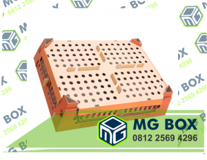 Keunggulan Box Ayam/Doc MG-Box